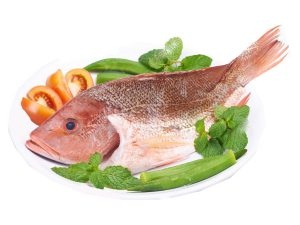 fresh fish plate2