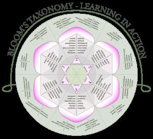 Blooms_rose_taxonomy